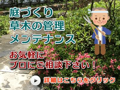 庭づくり、草木の管理、メンテナンス